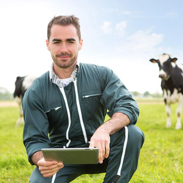Digital farmer web